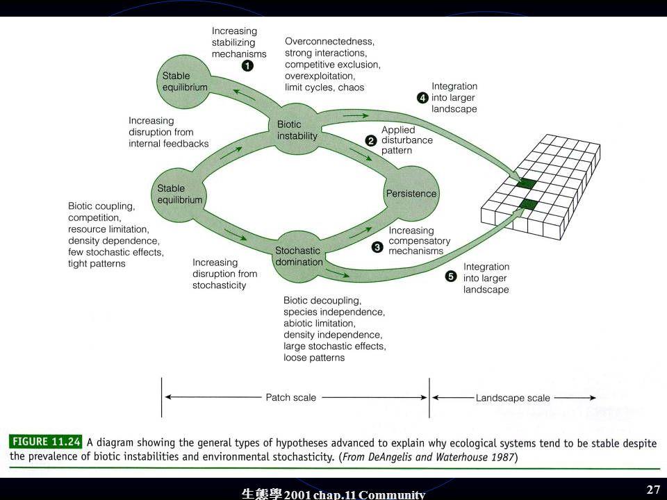 生態學 2001 chap.11 Community structure 26 DeAgelis and Waterhouse (1987) 4.