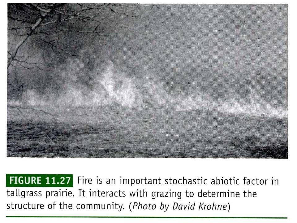 生態學 2001 chap.11 Community structure 32
