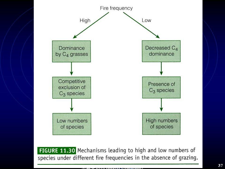 生態學 2001 chap.11 Community structure 36