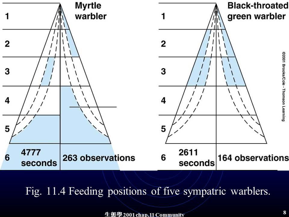生態學 2001 chap.11 Community structure 7 Fig. 11.3 The five species of warblers.