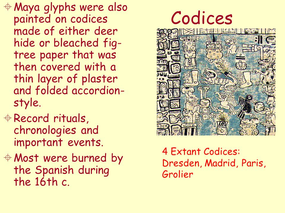 Codices  Maya glyphs were also painted on codices made of either deer hide or bleached fig- tree paper that was then covered with a thin layer of pla