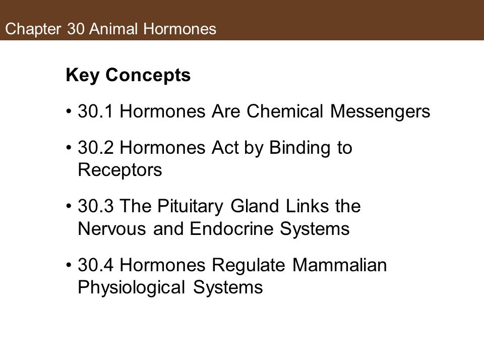 Chapter 30 Animal Hormones Key Concepts 30.1 Hormones Are Chemical Messengers 30.2 Hormones Act by Binding to Receptors 30.3 The Pituitary Gland Links