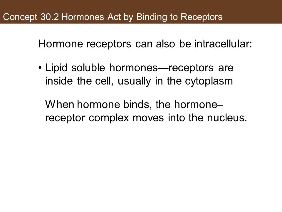 Concept 30.2 Hormones Act by Binding to Receptors Hormone receptors can also be intracellular: Lipid soluble hormones—receptors are inside the cell, u