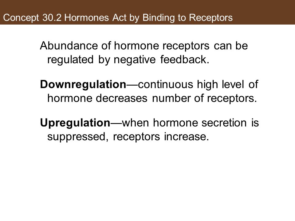 Concept 30.2 Hormones Act by Binding to Receptors Abundance of hormone receptors can be regulated by negative feedback. Downregulation—continuous high