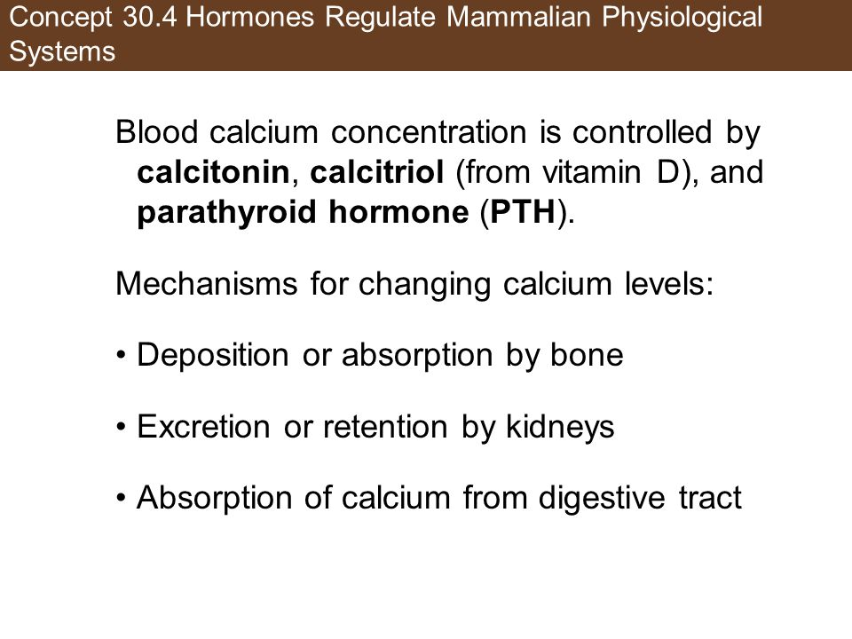 Concept 30.4 Hormones Regulate Mammalian Physiological Systems Blood calcium concentration is controlled by calcitonin, calcitriol (from vitamin D), a