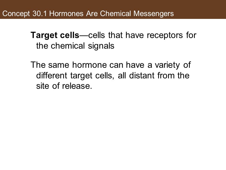 Concept 30.1 Hormones Are Chemical Messengers Target cells—cells that have receptors for the chemical signals The same hormone can have a variety of d