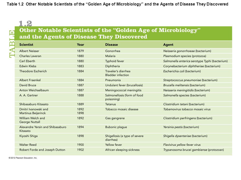 "Table 1.2 Other Notable Scientists of the ""Golden Age of Microbiology"" and the Agents of Disease They Discovered"