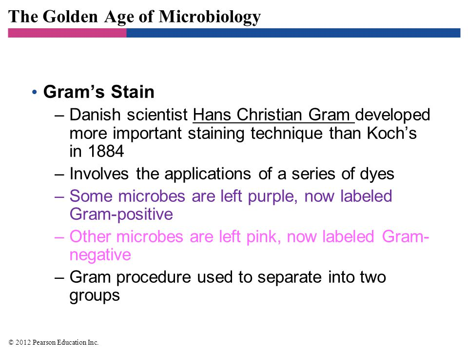 The Golden Age of Microbiology Gram's Stain –Danish scientist Hans Christian Gram developed more important staining technique than Koch's in 1884 –Inv
