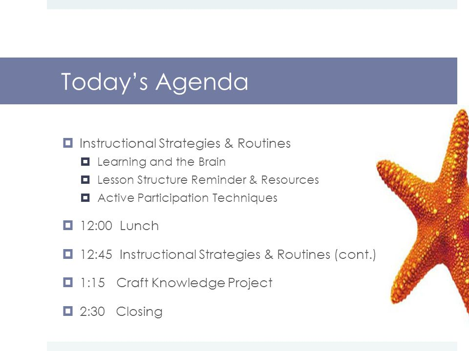  Instructional Strategies & Routines  Learning and the Brain  Lesson Structure Reminder & Resources  Active Participation Techniques  12:00 Lunch  12:45 Instructional Strategies & Routines (cont.)  1:15 Craft Knowledge Project  2:30 Closing Today's Agenda