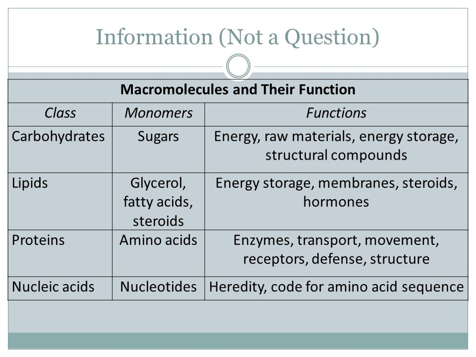 Information (Not a Question) Macromolecules and Their Function ClassMonomersFunctions CarbohydratesSugarsEnergy, raw materials, energy storage, struct