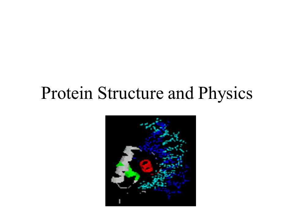 Protein Structure and Physics