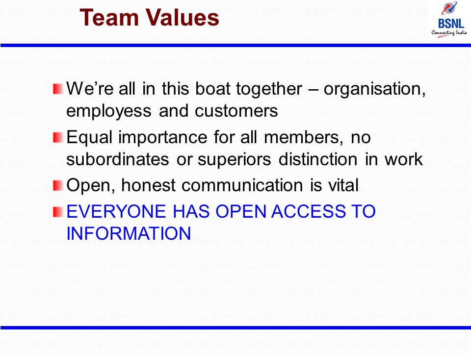 Team Values We're all in this boat together – organisation, employess and customers Equal importance for all members, no subordinates or superiors dis