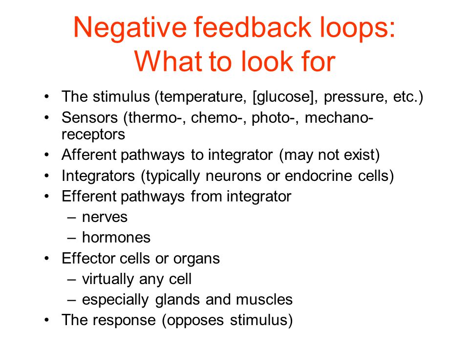 Negative feedback loops: What to look for The stimulus (temperature, [glucose], pressure, etc.) Sensors (thermo-, chemo-, photo-, mechano- receptors Afferent pathways to integrator (may not exist) Integrators (typically neurons or endocrine cells) Efferent pathways from integrator –nerves –hormones Effector cells or organs –virtually any cell –especially glands and muscles The response (opposes stimulus)