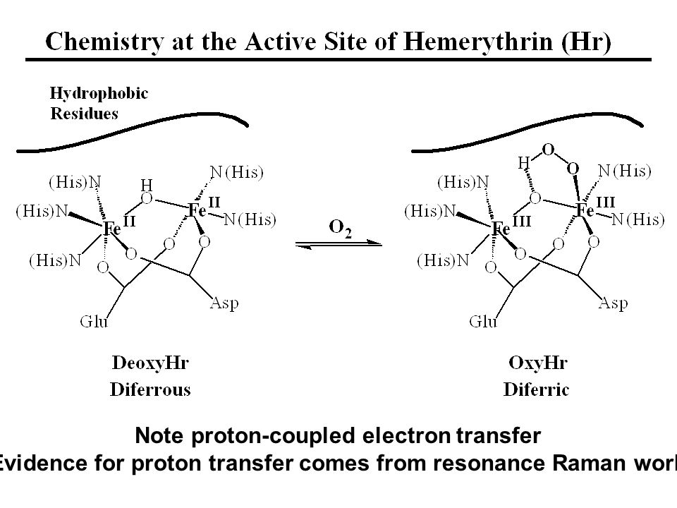 Note proton-coupled electron transfer Evidence for proton transfer comes from resonance Raman work