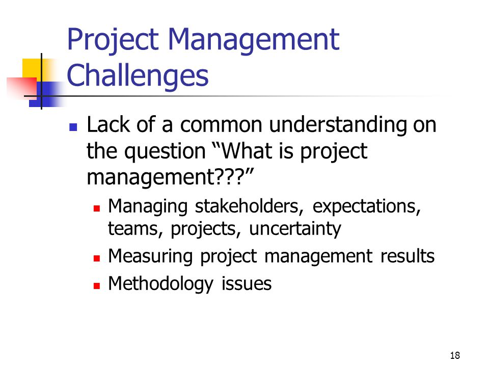 18 Project Management Challenges Lack of a common understanding on the question What is project management??? Managing stakeholders, expectations, teams, projects, uncertainty Measuring project management results Methodology issues