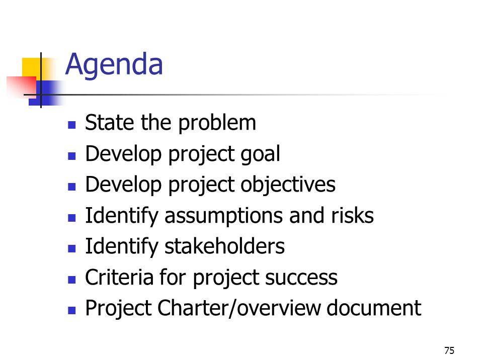 75 Agenda State the problem Develop project goal Develop project objectives Identify assumptions and risks Identify stakeholders Criteria for project success Project Charter/overview document