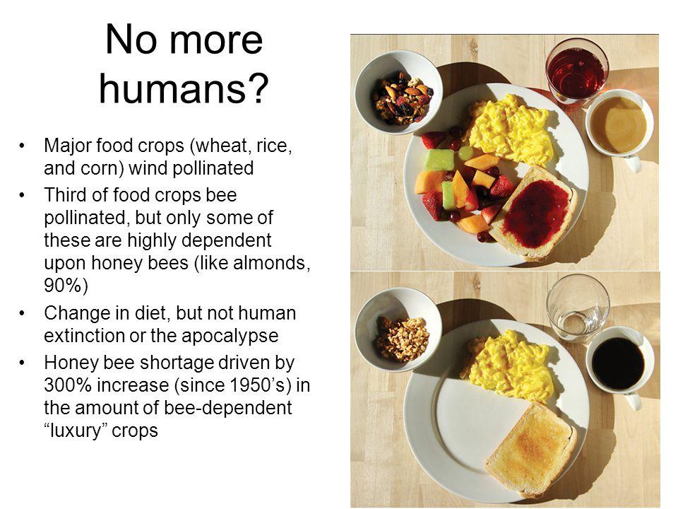 No more humans.