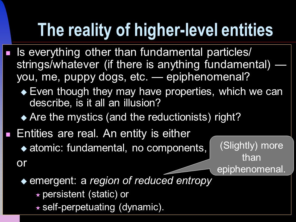 29 The reality of higher-level entities Is everything other than fundamental particles/ strings/whatever (if there is anything fundamental) — you, me, puppy dogs, etc.