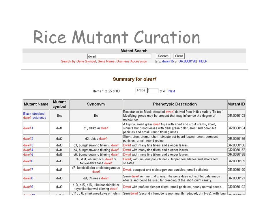 Rice Mutant Curation