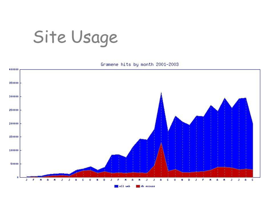 Site Usage