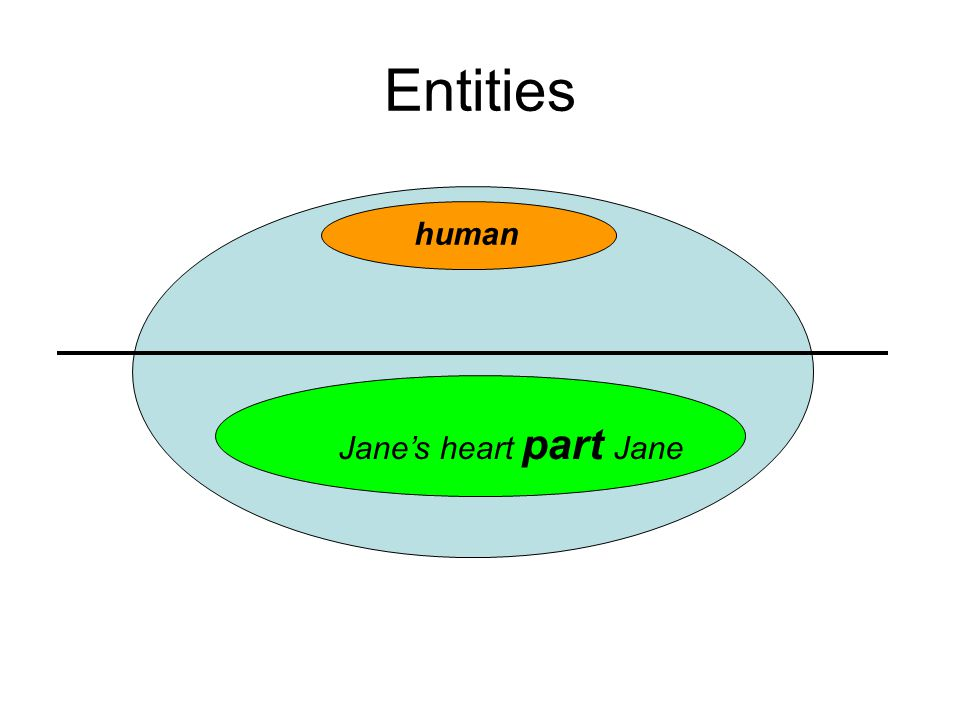 Entities human Jane's heart part Jane
