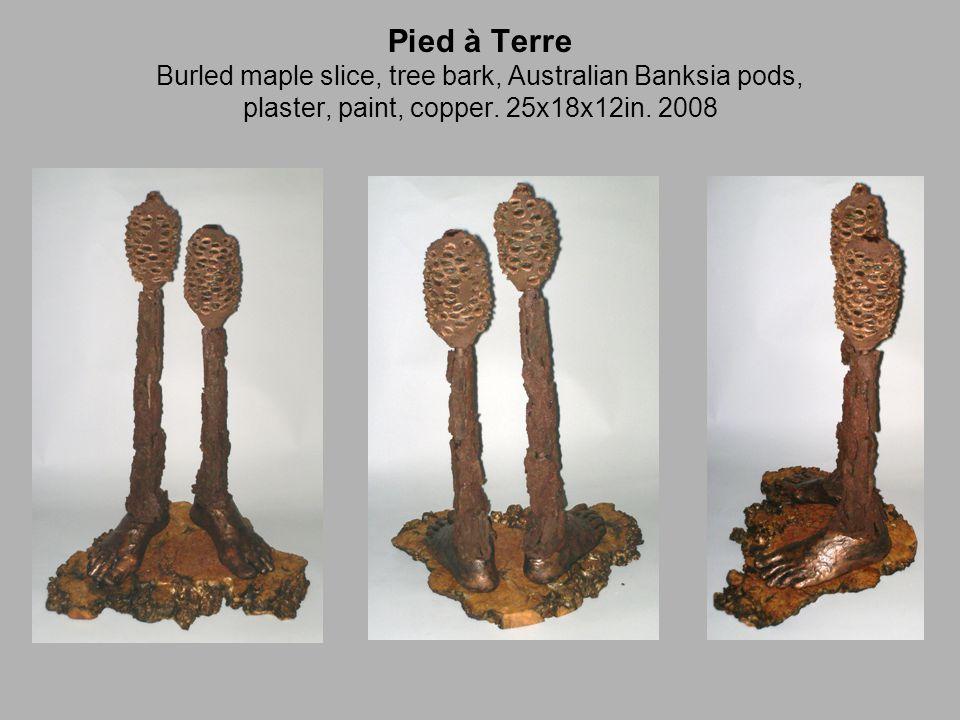 Pied à Terre Burled maple slice, tree bark, Australian Banksia pods, plaster, paint, copper.