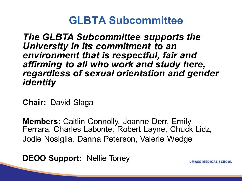 GLBTA Subcommittee The GLBTA Subcommittee supports the University in its commitment to an environment that is respectful, fair and affirming to all who work and study here, regardless of sexual orientation and gender identity Chair: David Slaga Members: Caitlin Connolly, Joanne Derr, Emily Ferrara, Charles Labonte, Robert Layne, Chuck Lidz, Jodie Nosiglia, Danna Peterson, Valerie Wedge DEOO Support: Nellie Toney