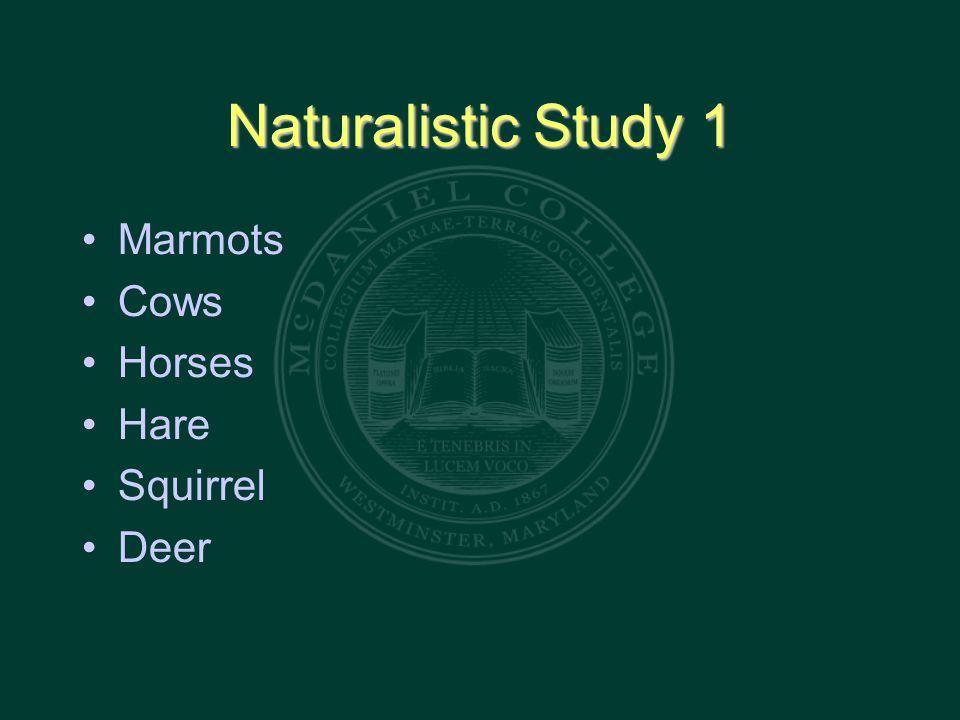 Naturalistic Study 1 Marmots Cows Horses Hare Squirrel Deer