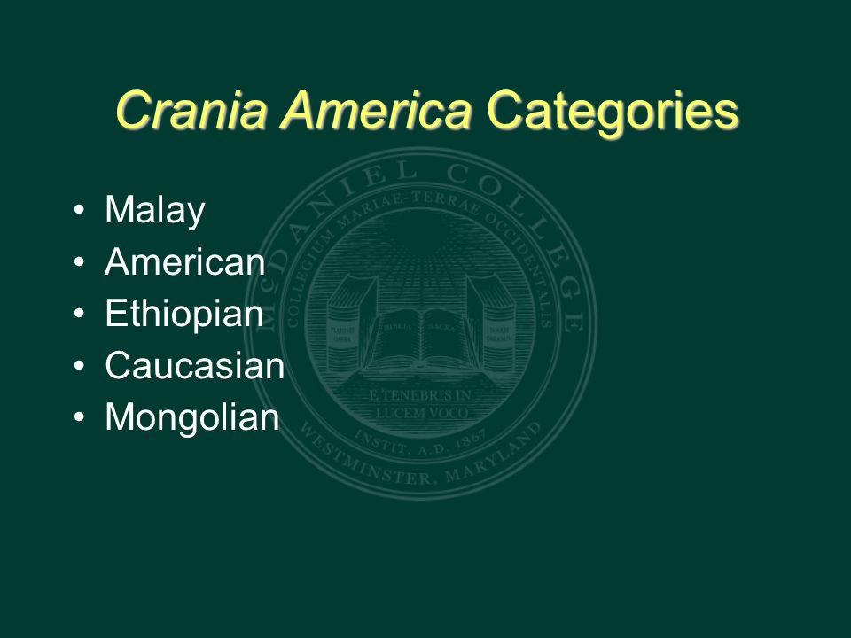 Crania America Categories Malay American Ethiopian Caucasian Mongolian