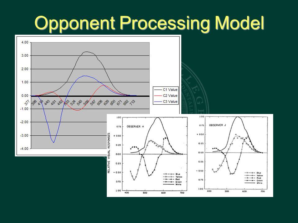 Opponent Processing Model