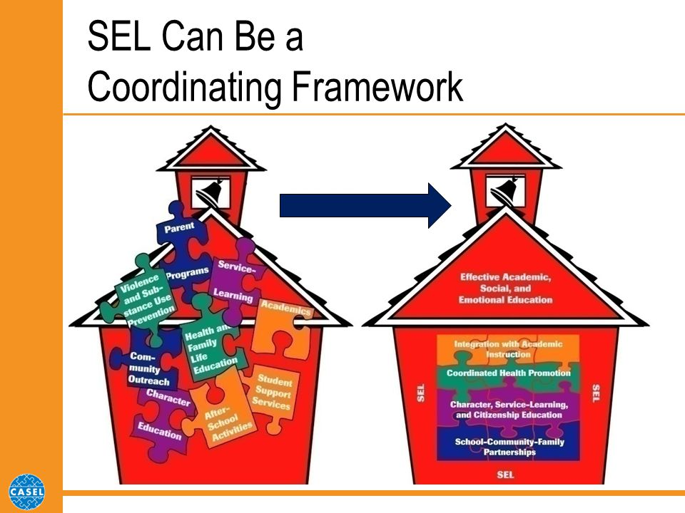 SEL Can Be a Coordinating Framework
