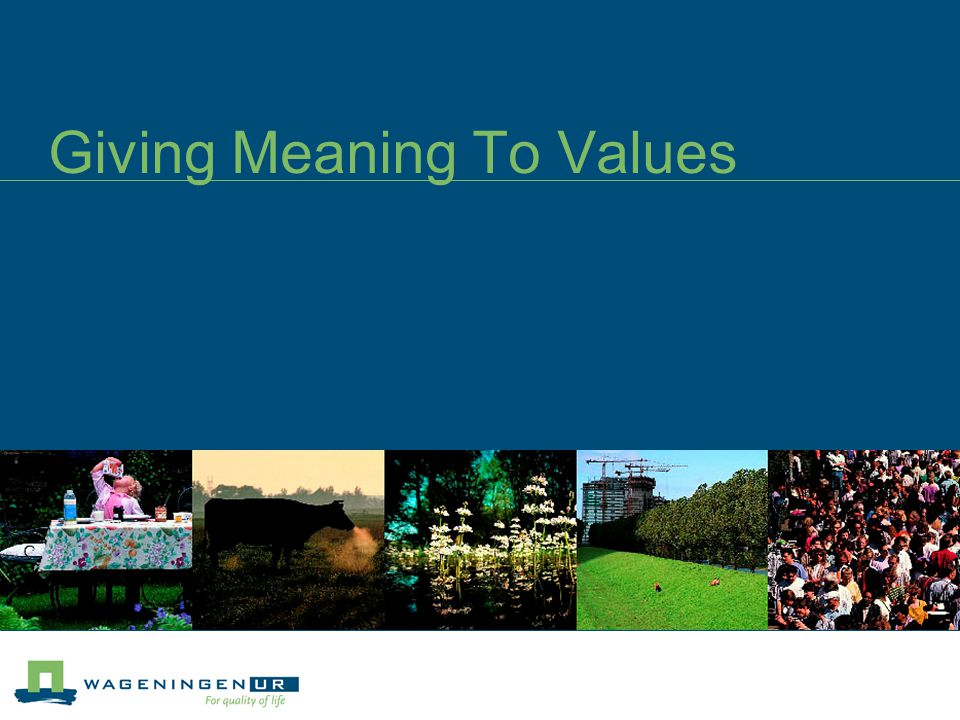 Meaning to Values (1) For any set of values to have an impact, they need to be clearly defined and aligned to the overall process of achieving the organisation's vision.