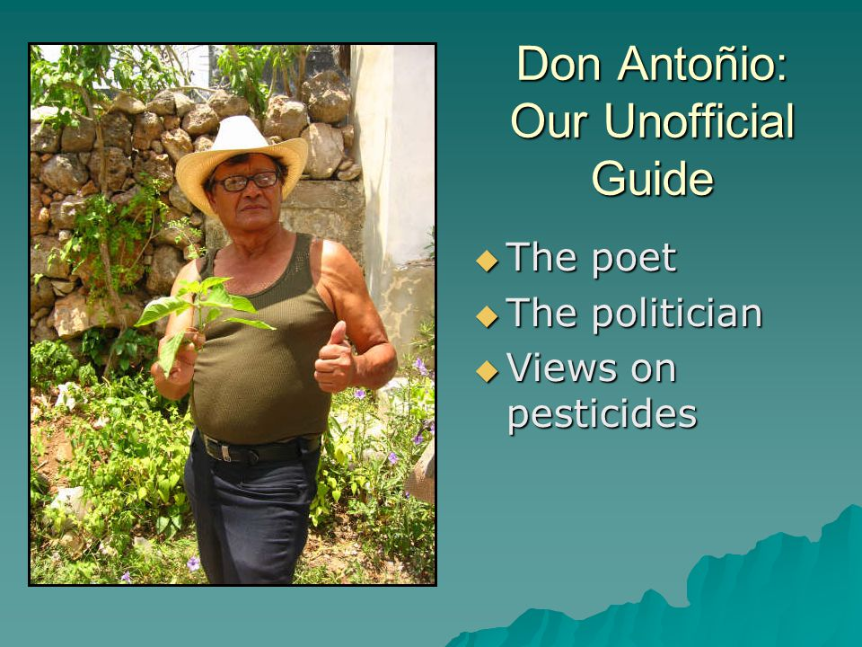 Don Antoñio: Our Unofficial Guide  The poet  The politician  Views on pesticides