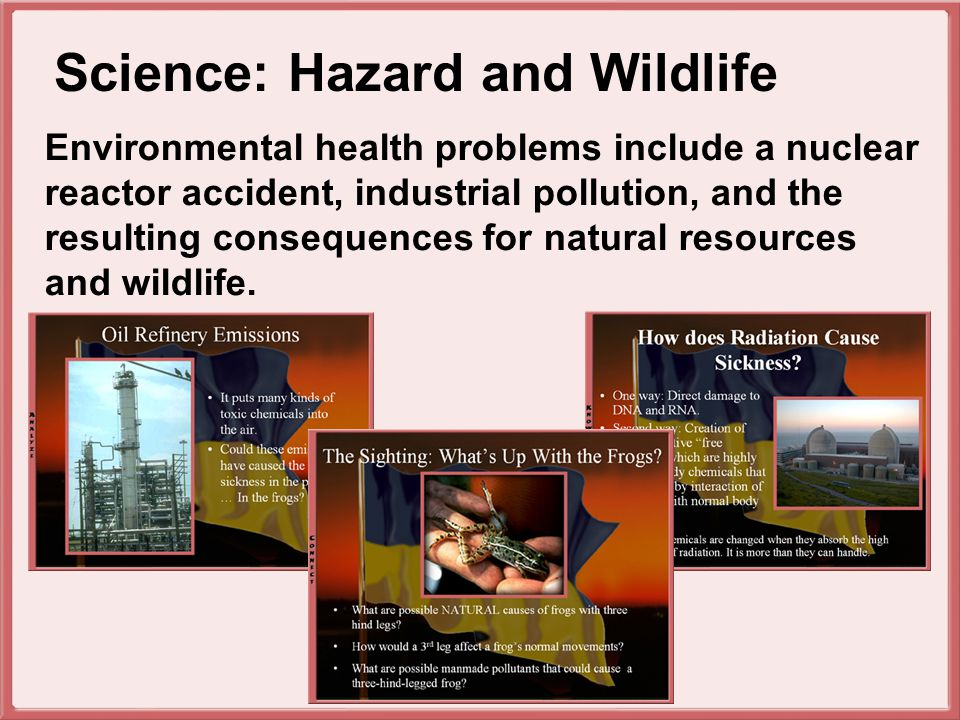 Environmental health problems include a nuclear reactor accident, industrial pollution, and the resulting consequences for natural resources and wildlife.