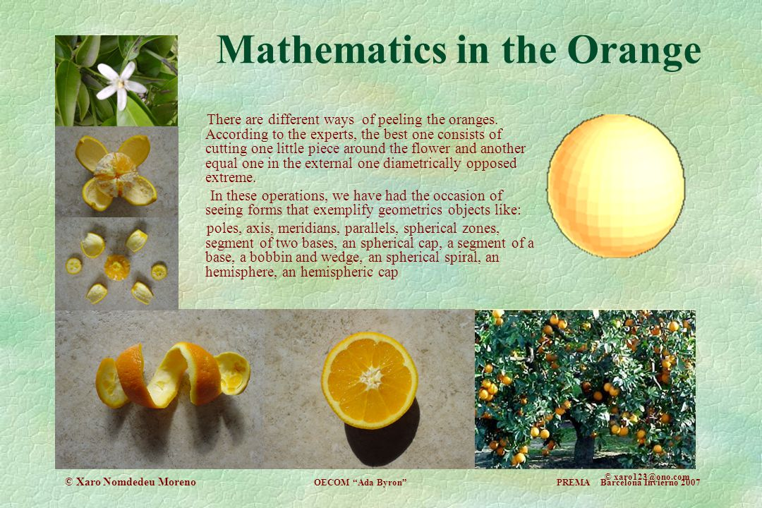 Mathematics in the Orange © xaro123@ono.com There are different ways of peeling the oranges. According to the experts, the best one consists of cuttin