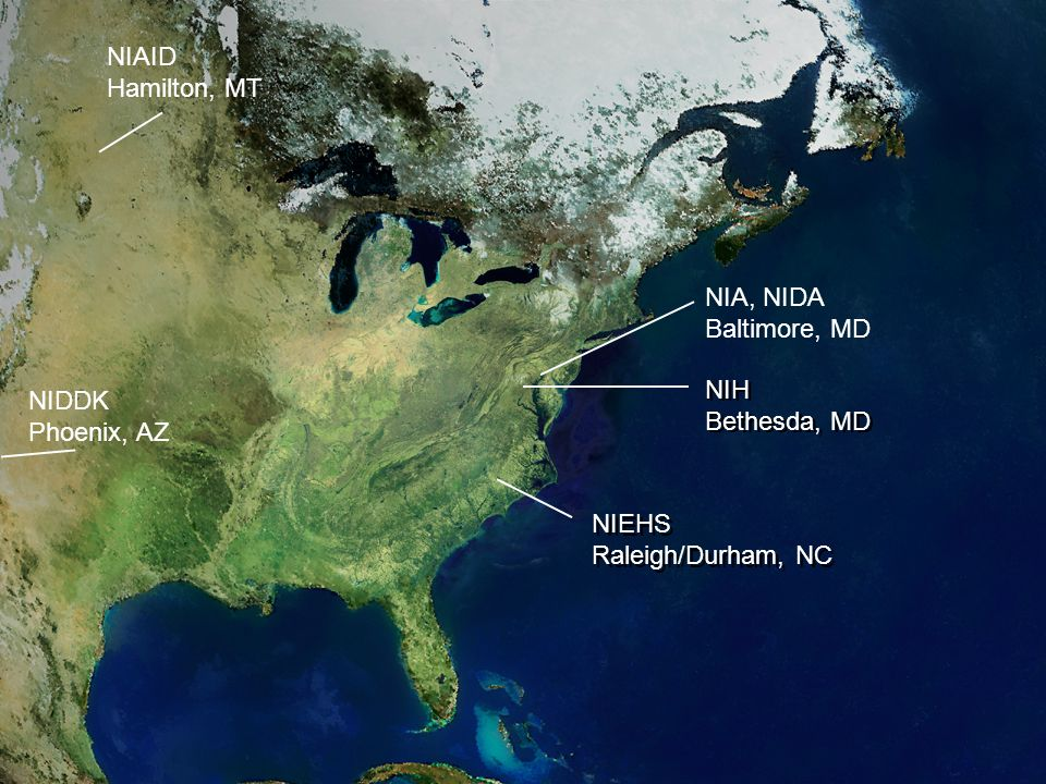 NIAID Hamilton, MT NIH Bethesda, MD NIEHS Raleigh/Durham, NC NIDDK Phoenix, AZ NIA, NIDA Baltimore, MD NIH Bethesda, MD NIEHS Raleigh/Durham, NC