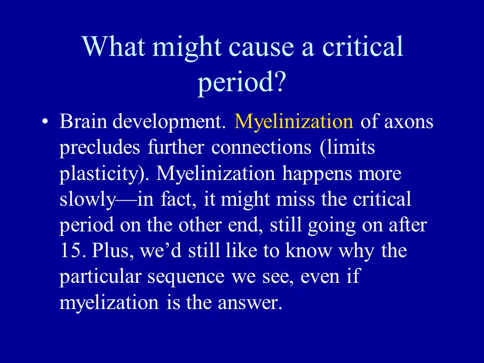 What might cause a critical period? Brain development. Myelinization of axons precludes further connections (limits plasticity). Myelinization happens