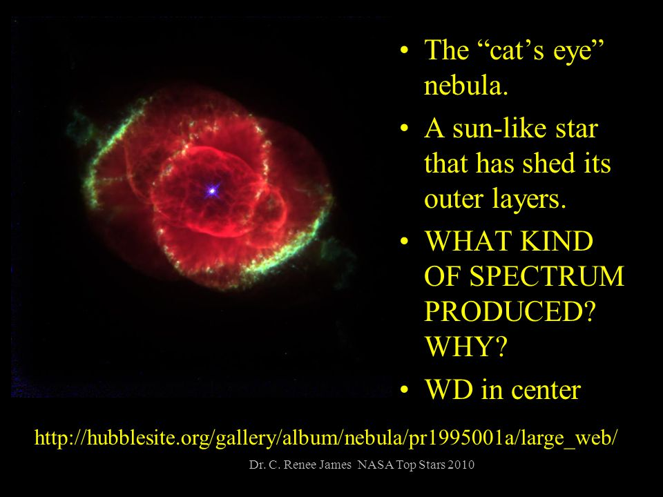 The cat's eye nebula. A sun-like star that has shed its outer layers.