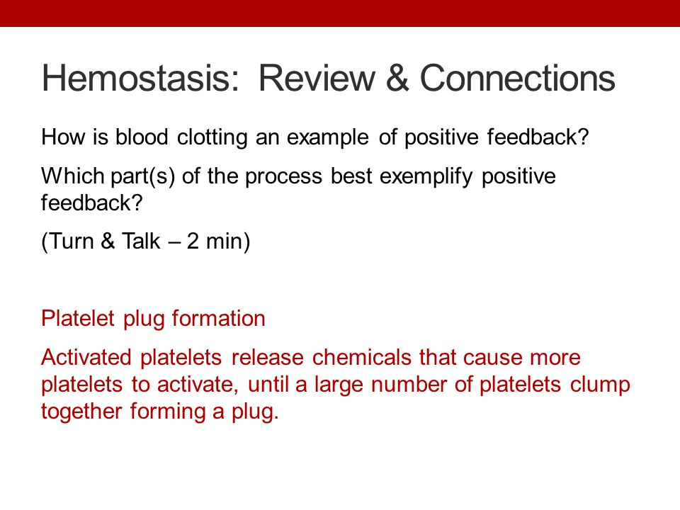 Hemostasis: Review & Connections How is blood clotting an example of positive feedback.