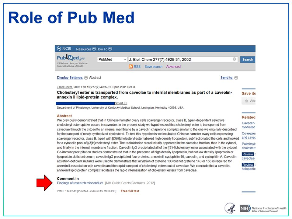 Role of Pub Med