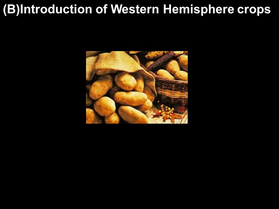 (B)Introduction of Western Hemisphere crops