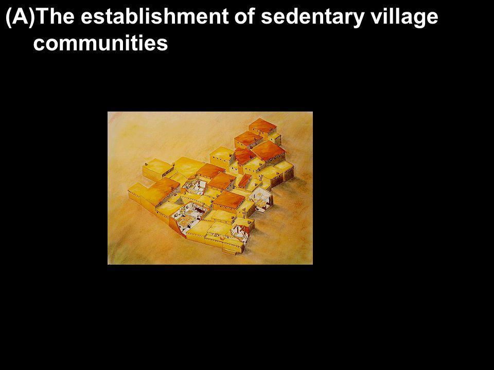 (A)The establishment of sedentary village communities