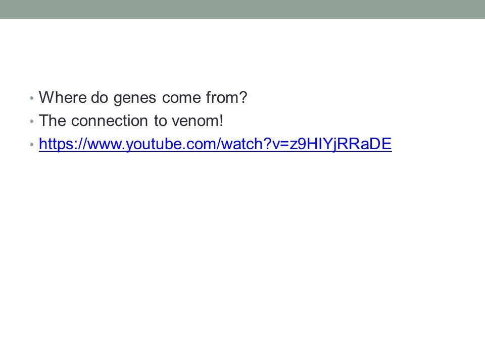 Where do genes come from The connection to venom! https://www.youtube.com/watch v=z9HIYjRRaDE