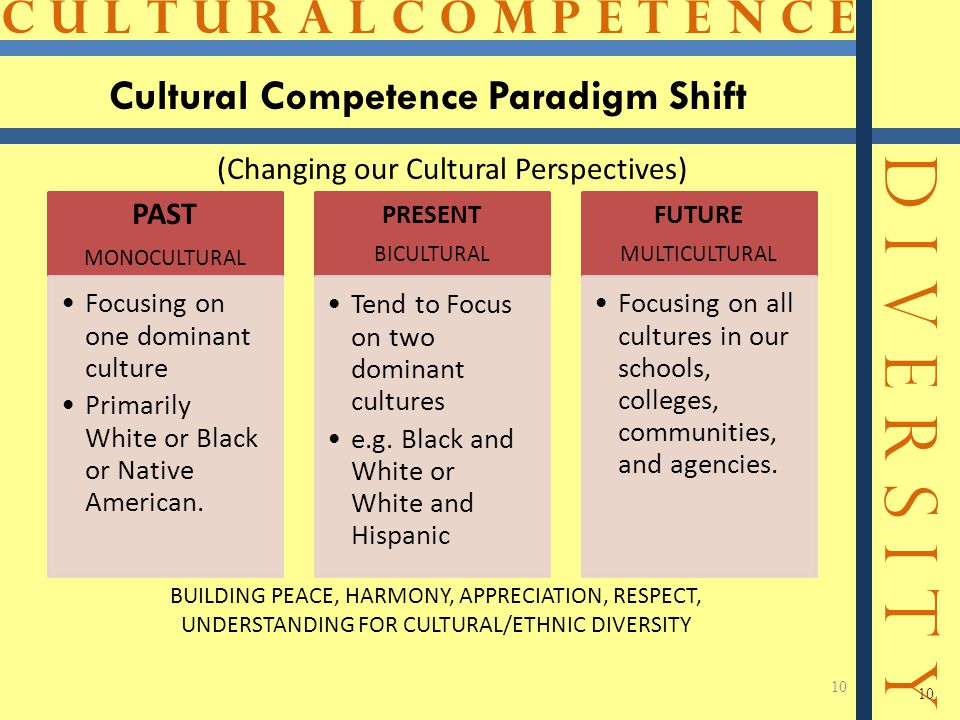 C U L T U R A L C O M P E T E N C E D I V E R S I T Y 10 Cultural Competence Paradigm Shift 10 PAST MONOCULTURAL Focusing on one dominant culture Prim
