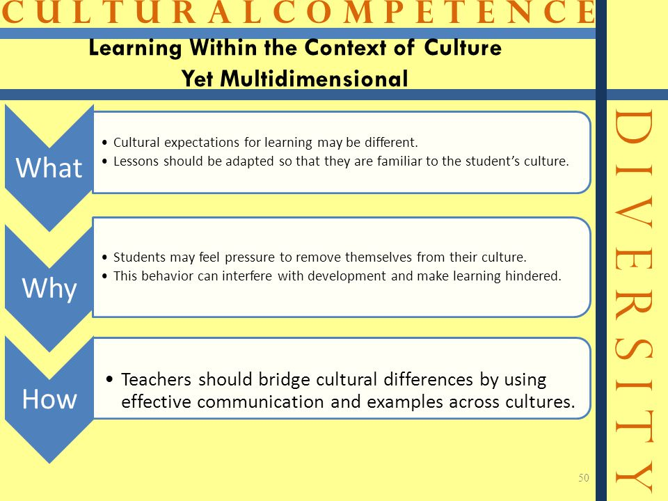 C U L T U R A L C O M P E T E N C E D I V E R S I T Y Learning Within the Context of Culture Yet Multidimensional What Cultural expectations for learning may be different.