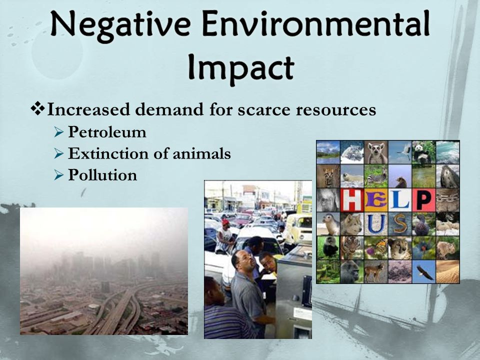  Increased demand for scarce resources  Petroleum  Extinction of animals  Pollution