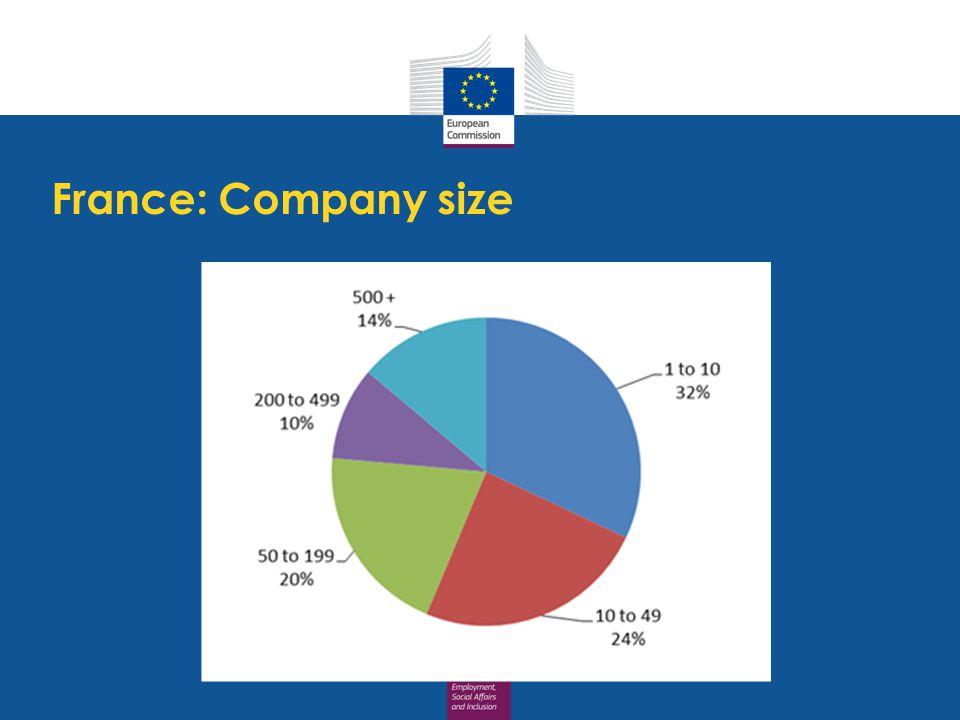 France: Company size
