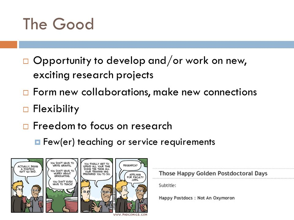 The Good  Opportunity to develop and/or work on new, exciting research projects  Form new collaborations, make new connections  Flexibility  Freed