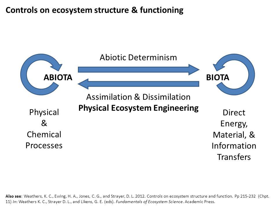 Ecosystem Engineering & Management Humans as ecosystem engineers 'par excellence' (Jones et al.