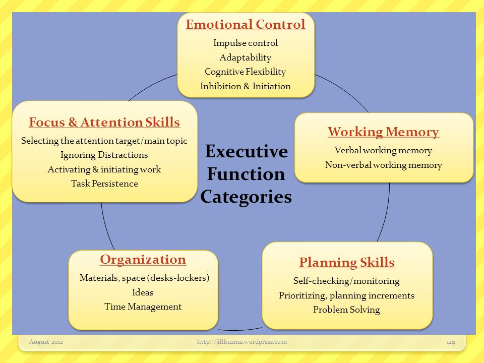 Emotional Control Impulse control Adaptability Cognitive Flexibility Inhibition & Initiation Working Memory Verbal working memory Non-verbal working m